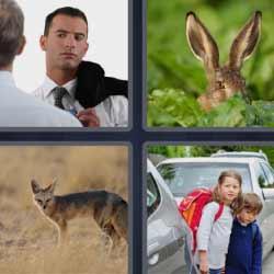 4 fotos 1 palabra orejas de liebre o conejo zorro niños