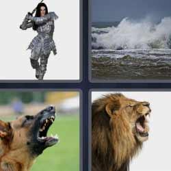 4 fotos 1 palabra león perro ladrando