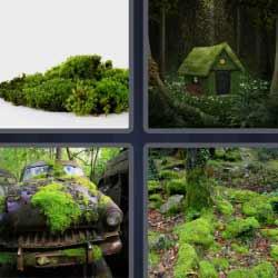4 fotos 1 palabra casa llena de murgo