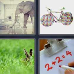 4 fotos 1 palabra elefante liebre