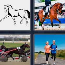 4 fotos 1 palabra  caballo jinete