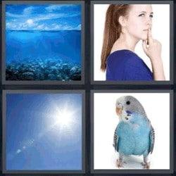 4 fotos 1 palabra periquito azul, cielo, mar, mujer con dedo en la boca