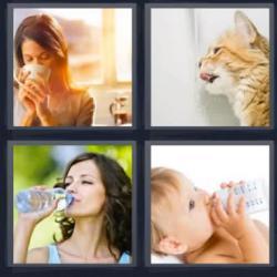 4 fotos 1 palabra mujer bebiendo gato