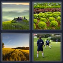 4 fotos 1 palabra paisaje fútbol