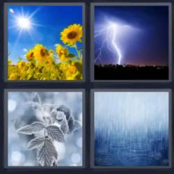 4 fotos 1 palabra girasol