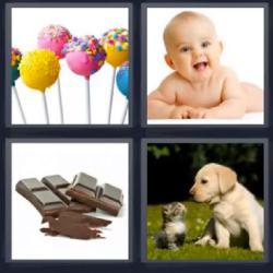 4 fotos 1 palabra bebé chocolate perro gato