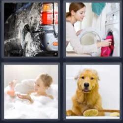 4 fotos 1 palabra lavadora perro