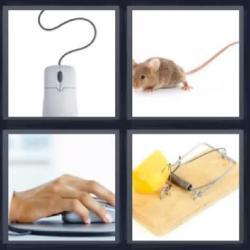 4 fotos 1 palabra trampa ratón