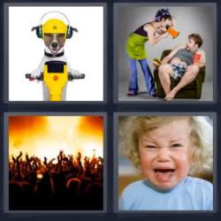 4 fotos 1 palabra perro casco