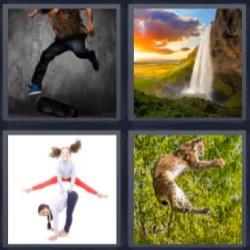 4 fotos 1 palabra cascada gato