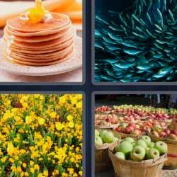 4 fotos 1 palabra peces manzanas flores amarillas crepes