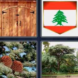 4 fotos 1 palabra puerta bandera