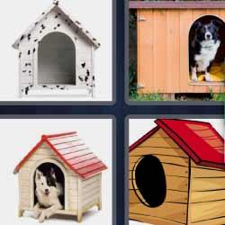 4 fotos 1 palabra casa de perro