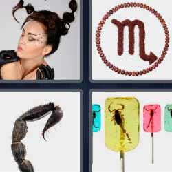 4 fotos 1 palabra escorpión, alacrán