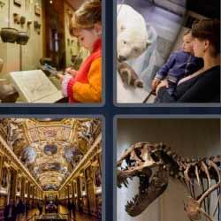 4 fotos 1 palabra oso polar dinosaurio