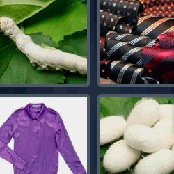 4 fotos 1 palabra camisa morada
