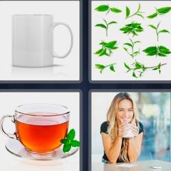 4 fotos 1 palabra hierbas verdes taza blanca mujer